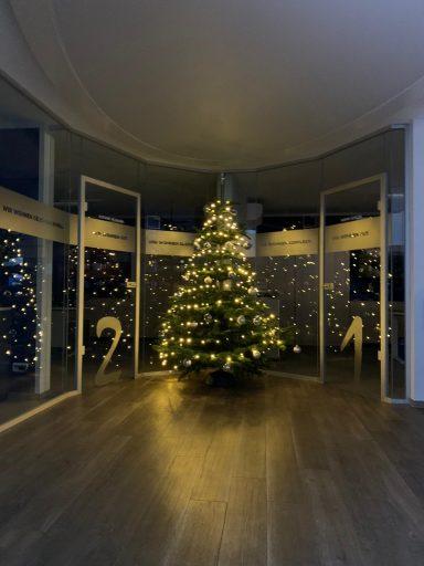 Weihnachtsbaum Geschäftsstelle WWG